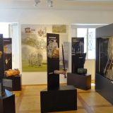 museum-auf-der-burg-golling