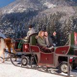 golling-winter-pfferdeschlittenfahrt